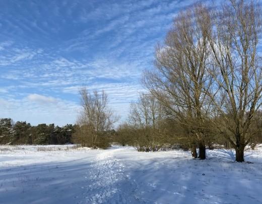 Winter in Tilburg - Foto 7