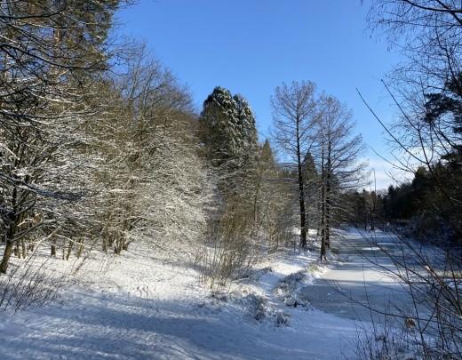 Winter in Tilburg - Foto 8