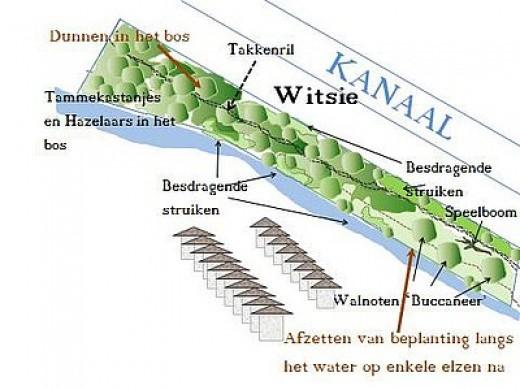 22 maart 2017: Tilburgse boomfeestdag bosgebied Witsie