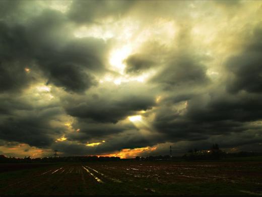 Stormwaarschuwing Tilburgse bossen