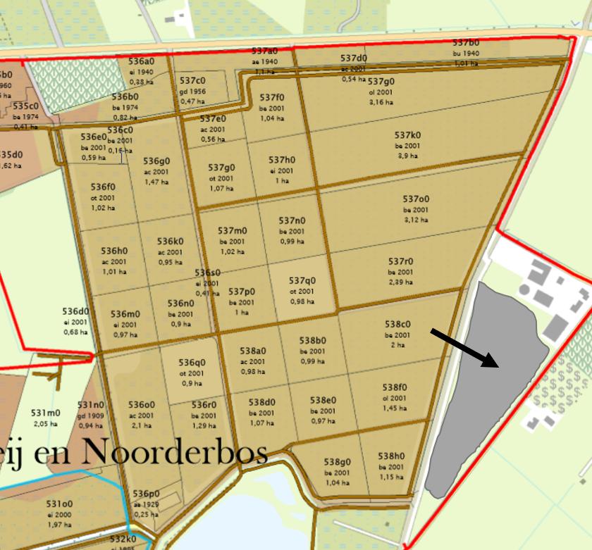 202109 Noorderbos Jong struweel.png